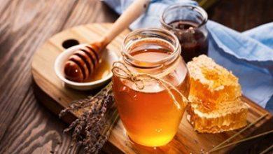 Photo of تقویت سلامت با عسل مادهای که معجزه میکند!!