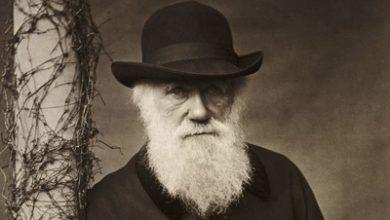 Photo of سخنان زیبا و آموزنده چارلز داروین