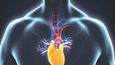 Photo of علل،علایم و درمان آب آوردن قلب (افیوژن پریکارد)